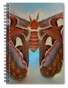 Giant Silk Moth Spiral Notebook