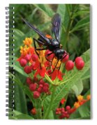 Giant Wasp Spiral Notebook