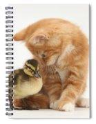 Ginger Kitten And Mallard Duckling Spiral Notebook