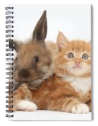 Ginger Kitten Young Lionhead-lop Rabbit Spiral Notebook