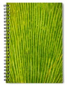 Ginko Tree Leaf Spiral Notebook