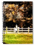 Girl Riding Horse Spiral Notebook