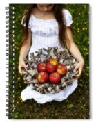 Girl With Apples Spiral Notebook