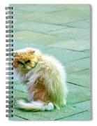 Giuseppe Spiral Notebook