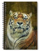 Give Me Your Tender Look Spiral Notebook