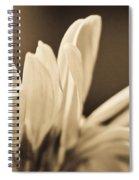 Giving Praise Spiral Notebook