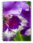 Gladiola Blossom 2 Spiral Notebook