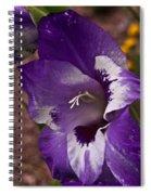 Gladiola Blossom 5 Spiral Notebook