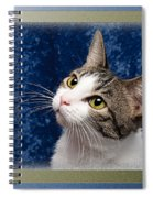 Glamour Girl Spiral Notebook