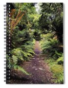 Glanleam, Co Kerry, Ireland Path In The Spiral Notebook