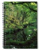 Glengarriff River, County Cork, Ireland Spiral Notebook
