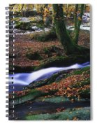Glenmacnass Waterfall, Co Wicklow Spiral Notebook
