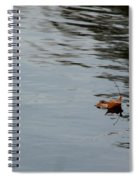 Gliding Across The Pond Spiral Notebook