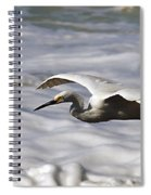 Gliding Snowy Egret Spiral Notebook