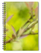 Glimpse Of Spring Spiral Notebook