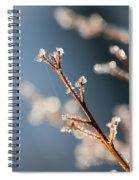 Glistening Ice Crystals Spiral Notebook