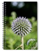 Globe Thistle Spiral Notebook