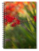 Glorious Red Spiral Notebook