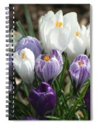 Glorious Spring Spiral Notebook