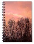 Glow Of A Winter Sunset Spiral Notebook