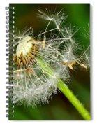 Glowing Dandelion Spores Spiral Notebook