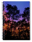 Glowing Forest Spiral Notebook