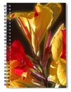 Glowing Iris Spiral Notebook