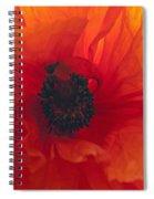 Glowing Poppy Spiral Notebook