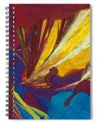 Glycine Spiral Notebook