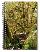 Gnomes In The Rainforest Spiral Notebook