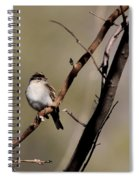 Go Ahead...make My Day Spiral Notebook