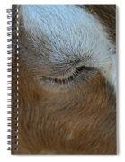 Goat Dreams Spiral Notebook