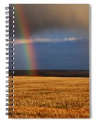 Gold At The End Of The Rainbow Spiral Notebook