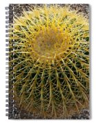 Gold Barrel Cactus   No 1 Spiral Notebook