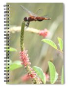 Gold In The Marsh Spiral Notebook