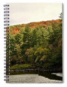 Gold Trimmed Trees Spiral Notebook