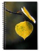 Golden Aspen Leaf Spiral Notebook