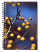 Golden Berries Spiral Notebook