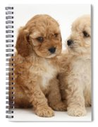 Golden Cockerpoo Puppies Spiral Notebook