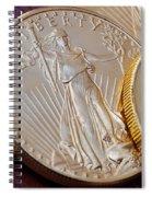 Golden Coins II Spiral Notebook
