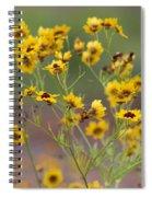 Golden Coreopsis Tickseed Wildflowers Spiral Notebook