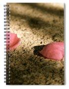 Golden Days Gone Spiral Notebook