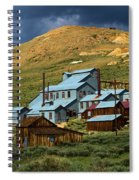 Golden Dreams Spiral Notebook