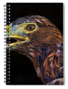 Golden Eagle Spiral Notebook