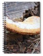 Golden Edged Mushroom Spiral Notebook