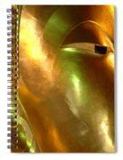 Golden Face Of Buddha Spiral Notebook