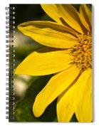 Golden Flower 1 Spiral Notebook