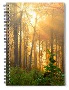 Golden Fog Thru The Trees Spiral Notebook