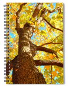 Golden Green Spiral Notebook