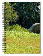 Golden Hay Day Spiral Notebook